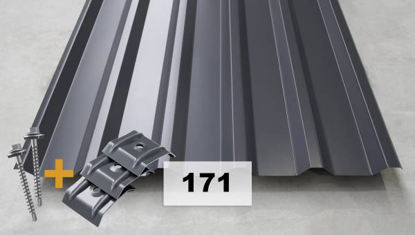Komplettpaket Nr. 171 Trapezblech + Schrauben + Kalotten